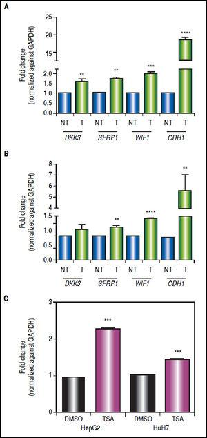 Gene expression levels of the Wnt/β-catenin pathway antagonists after combined treatments with 5aza-dC and TSA. Quantitative analysis of DKK3, SFRP1, WIF1 and CDH1 mRNA levels in HepG2 cells (A) and HuH7 cells (B), treated with 5aza-dC and TSA. Quantitative analysis of CDH1 mRNA levels in cells treated with TSA alone (C). mRNA level of each gene were compared between treated (5aza-dC+TSA) and non-treated (DMSO) cells and normalized against GAPDH. NT: non-treated and T: treated. The experiments were performed in triplicate and results correspond to means and the comparison of the differences of the means, between treated and non-treated cells, with 95%% confidence intervals ± SD. p < 0.05 denotes statistical significance. * p < 0.05, ** p < 0.005, *** p < 0.0005, ****p < 0.0001.