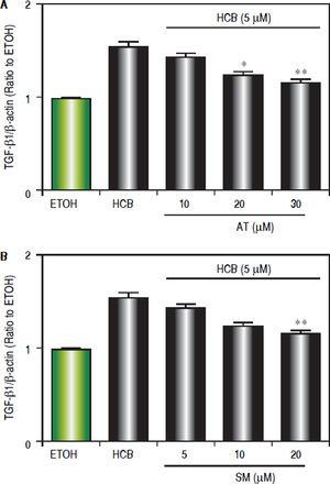 Effect of statins on TGF-β 1 protein levels, in Hep-G2 cells treated with HCB. A. Western blot analysis of TGF-β1 protein levels in Hep-G2 cells pretreated with AT (10, 20 and 30 μM) or SM (5, 10 and 20 μM) for 3 h and then treated with HCB (5 μM) for 24 h. Quantification of TGF-β 1 L-19 ratio to ETOH is shown in the lower panel. B. Values are means ± SEM of three independent experiments. Significantly different (*p < 0.05 and **p < 0.05) compared to HCB-treated cells.
