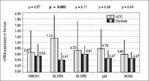 mRNA levels of selected genes in the liver of HCC patients. HMOX1 : heme oxygenase 1. BLVRA: biliverdin reductase A. BLVRB: biliverdin reductase B. p22: gene encoding for p22 phox protein, NOX2: NADPH oxidase 2.