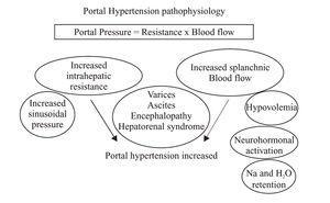 Pregnancy and portal hypertension share increased volume state.