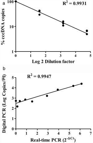 Detection of intracellular cccDNA in HepAD38 cells. (A) Various amounts of HBV cccDNA extracted from HepAD38 cells were quantified by digital PCR. The cccDNA copy numbers revealed by digital PCR were highly consistent with the input numbers (R2=0.9931). (B) Correlation of the cccDNA levels measured by digital PCR and real-time PCR. The results produced by the two methods were highly correlated (R2=0.9947).
