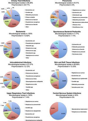 Proportions of microorganisms isolated in each infectious complication. In the heading of each graphic, the category of infectious complication with the respective rates of positive cultures and polymicrobial infections is described.
