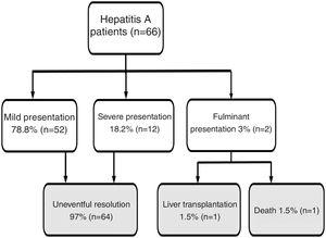 Flow chart. Hepatitis A patient's outcome during follow-up. Note: Mild presentation: clinical course without severe/fulminant hepatitis evolution; Severe presentation: Hepatitis A with coagulopathy (INR less than 1.5 or prothrombin time expressed in activity percentage less than 50%); Fulminant presentation: severe hepatitis A with encephalopathy.