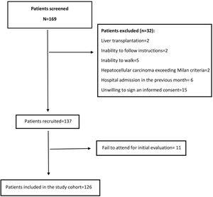Flowchart of patients evaluated and finally included in the study.