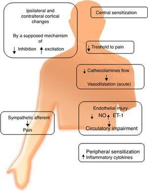 Clinical manifestations of CRPS and pathophysiological mechanisms proposed to each.