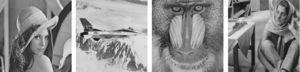512×512 sized, grayscale test images. From left to right are, Lena, Airplane, Baboon and Barbara.