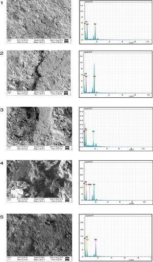 SEM micrograph and EDS analysis of sample 1–5.