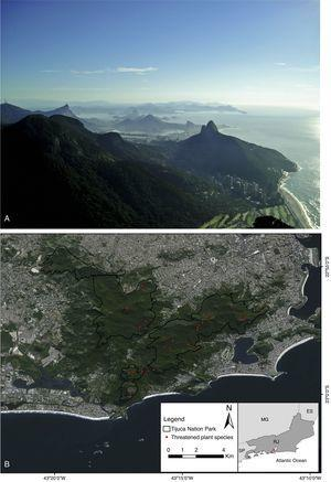 (A) View from the Tijuca National Park, the largest urban forest in the world. Photo: Pablo Viany Prieto. (B) Occurrence records for 67 threatened plant species in the Tijuca National Park, Rio de Janeiro, Brazil.