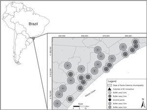 "Location of the 24 studied landscapes (circles) in southern Brazil. Landscapes were centered at twelve sites in which Myiopsitta monachus established colonies (triangles) and twelve ""control"" sites in which the species was absent (points). Two buffer areas (with radius of 2 or 3km) were used to measure landscape composition surrounding each site."