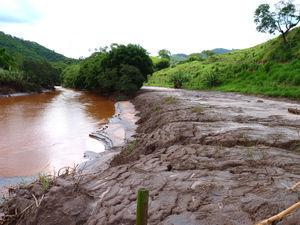 Large tailings deposits are still accumulated in the Gualaxo do Norte river and floodplains.