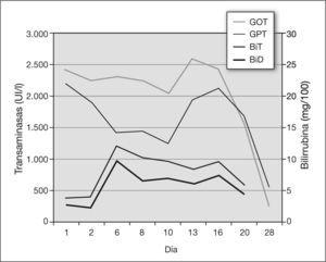 Concentración de transaminasas y bilirrubina durante el ingreso de la paciente y en revisión posterior.