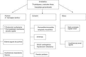 Repercusión clínica sobre aparatos y sistemas de la inhalación de fosfina.