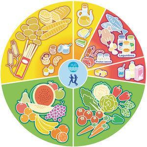 Rueda de los Alimentos. Fuente: Sociedad Española de Dietética y Ciencias de la Alimentación (SEDCA), 2005