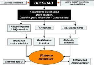 Mecanismos y factores determinantes de las complicaciones metabólicas asociadas a la obesidad.