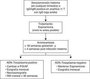 Algoritmo de actuación ante el diagnóstico o la sospecha de infección materna durante la gestación.