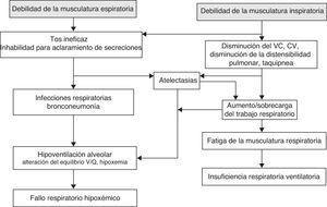 Fisiopatología respiratoria en el paciente con enfermedad neuromuscular.