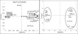 ACP aplicado a la composición de la microbiota de las biopsias y los parámetros analizados en pacientes celíacos y controles sanos (CS). Correlación de las variables analizadas y los componentes principales que explican el 83,44% de la varianza. Distribución de sujetos celíacos y controles sanos a lo largo de los ejes F1 y F2.
