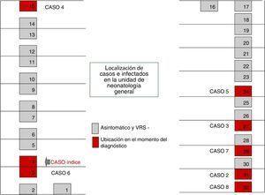 Localización de casos e infectados por virus respiratorio sincitial en la Unidad de Neonatología General.