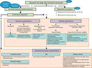 Algoritmo diagnóstico del hemangioma infantil. AP: Atención Primaria&#59; HI: hemangioma Infantil&#59; PHACES: Posterior fossa malformations/Hemangiomas/Arterial anomalies/Cardiac defects/Eye abnormalities/Sternal cleft/Supraumbilical raphe syndrome&#59; PELVIS: Perineal hemangioma/External genitalia malformations/Lipomyelomeningocele/Vesicorenal abnormalities/Imperforate anus/Skin tag&#59; RM: resonancia magnética.