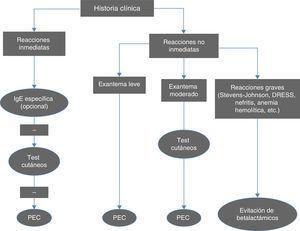 Algoritmo para el diagnóstico de reacciones inmediatas y no inmediatas a betalactámicos. PEC: prueba de exposición controlada. Modificado de Fernández et al.10.