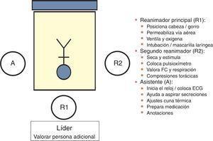 Distribución de roles en reanimación neonatal.