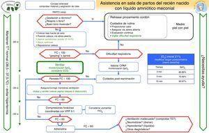 Algoritmo de reanimación del recién nacido no vigoroso con líquido amniótico meconial.
