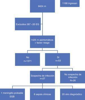 Distribución de los recién nacidos del estudio.