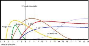 Secuencia de eventos de la inmunidad en la primoinfección por VRS en lactantes con bronquiolitis aguda. Tras la incubación prodrómica, el pico de carga viral acontece en torno al 4.° día asociado a la activación de células natural killer (NK) que liberan interferón-γ, seguida del reclutamiento de linfocitos T CD4 y CD8. Los síntomas catarrales aparecen entre el 3 y 5 desde la infección y el distrés respiratorio sobreviene sobre las 48 h de los síntomas catarrales. La formación de anticuerpos neutralizantes contra las proteínas de superficie (Ac anti-VRS) es tardía, a la vez que se elimina el virus y decrece la sintomatología.