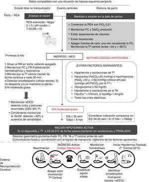 Protocolo de actuación en las primeras 6h de vida y «cadena de neuroprotección cerebral». aEEG: electroencefalograma integrado por amplitud&#59; BS: patrón brote supresión&#59; CBV: patrón continuo de bajo voltaje&#59; DB: déficit de bases&#59; EG: edad gestacional&#59; EHI: encefalopatía hipóxico-isquémica&#59; FC: frecuencia cardiaca&#59; FiO2: fracción inspirada de oxígeno&#59; FR: frecuencia respiratoria&#59; g: gramos&#59; hdv: horas de vida&#59; hipoCa++: hipocalcemia&#59; hipoMg++: hipomagnesemia&#59; min: minutos&#59; P: patrón plano&#59; PaO2: presión parcial de oxígeno en la sangre arterial&#59; PaCO2: presión parcial de dióxido de carbono en la sangre arterial&#59; rScO2: saturación regional de oxígeno cerebral&#59; REA: reanimación&#59; RN: recién nacido&#59; SatO2: saturación arterial de oxígeno&#59; Ta: temperatura&#59; TA: tensión arterial.