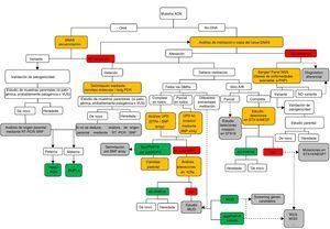 Algoritmo del estudio molecular para la confirmación del diagnóstico de PHP y enfermedades relacionadas. Si el paciente presenta osteodistrofia hereditaria de Albright (OHA), hay que descartar la presencia de alteraciones genéticas en GNAS, incluyendo mutaciones puntuales (secuenciación) y reordenamientos genómicos. Una vez que la variante ha sido identificada, debe confirmarse su patogenicidad de acuerdo con las guías clínicas40 y, cuando sea posible, debe determinarse el origen parental. En ausencia de OHA, el estudio debe comenzar por la búsqueda de alteraciones epigenéticas. En función del patrón de metilación obtenido, se necesitarán estudios posteriores para alcanzar el diagnóstico definitivo: a)si el defecto de la metilación está restringido a GNAS A/B:TSS DMR, deberán buscarse las deleciones de STX16 y, si se encuentran, se confirmará el diagnóstico de PHP1B autosómico dominante (AD-PHP1B)&#59; b)si la metilación afecta a los cuatro DMR, debería analizarse la posibilidad de disomía uniparental paterna del cromosoma 20 (patUPD20q)&#59; c)si no se encontrara la patUPD20q, deberían estudiarse las deleciones en NESP/AS&#59; d)si no se identifican causas genéticas subyacentes a las alteraciones de la metilación, es probable que el paciente presente la forma esporádica de PHP1B (spor-PHP1B). Una vez descartadas las alteraciones en el locus GNAS como la causa del fenotipo, y en pacientes con OHA, deberían secuenciarse los genes responsables de las enfermedades relacionadas a PHP (es decir, al menos PDE4D y PRKAR1A). Los cuadros en amarillo indican la tecnología&#59; en verde, la confirmación molecular definitiva&#59; en gris se sugieren los pasos de investigación/futuros a realizar. MLID: trastornos causados por alteración de la impronta en múltiples loci (multi-locus imprinting disturbance)&#59; NGS: secuenciación masiva (next-generation sequencing)&#59; STRs: microsatélites (short tandem repeats)&#59; UPD: disomía uniparental&#59; VUS: variante de significado inc