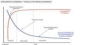 La etapa con mayor retorno económico de la inversión es el embarazo y los primeros 5 años. Fuente: Con permiso de Heckman & Carneiro Human Social Policy, 2003, RAND, Benefits and Costs of Early-Childhood Interventions, A Documented Briefing, Lynn A. Karoly, Susan S. Everingham, Jill Hoube, Rebecca Kilburn, C. Peter Rydell, Matthew Sanders, Peter W. Greenwood, April, 1997.