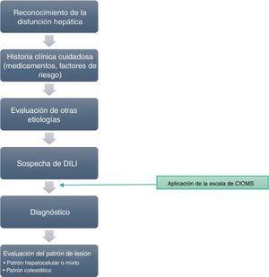 Algoritmo para el abordaje del diagnóstico de DILI.