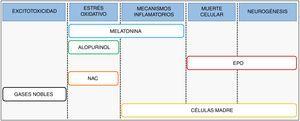 Posibles dianas terapéuticas y principales estrategias neuroprotectoras bajo ensayo frente a la EHI neonatal. EPO: eritropoyetina; NAC: N-acetilcisteína.