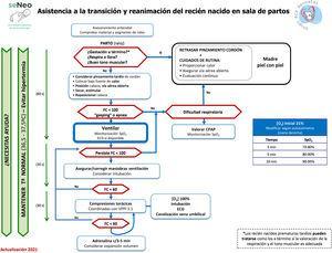 Algoritmo genérico de reanimación neonatal, GRN-SENeo.