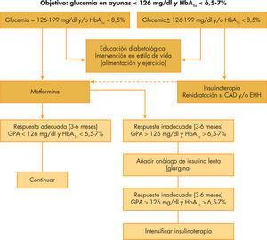 Algoritmo de tratamiento de la diabetes mellitus tipo 2 en la edad pediátrica. CAD: cetoacidosis diabética; EHH: estado hiperglucémico hiperosmolar; GPA: glucosa plasmática en ayunas; HbA1c: hemoglobina glucosilada