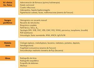 Procedimiento de diagnóstico de la pancitopenia. ANA: anticuerpos antinucleares; ANCA: anticuerpos citoplasmáticos antineutrófilos; CMV: citomegalovirus; IG: inmunoglobulina, PCR: reacción en cadena de la polimerasa; VEB: virus de Epstein-Barr; VHB: virus de la hepatitis B; VHC: virus de la hepatitis C; VHH6; virus del herpes humano tipo 6; VHS: virus del herpes simple; VIH: virus de la inmunodeficiencia humana.