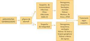 Protocolo de actuación: adenopatías generalizadas. ANA: anticuerpos antinucleares; Rx: radiografía.