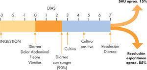 Evolución clínica del SHU asociado a diarrea