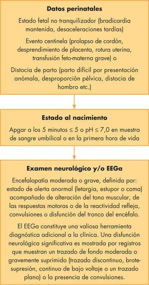 Criterios fisiológicos y clínicos de encefalopatía hipóxico-isquémica significativa e indicación de hipotermia. EEGa: electroencefalograma integrado por amplitud.