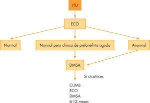 Algoritmo diagnóstico del reflujo vesicoureteral tras infección del tracto urinario.