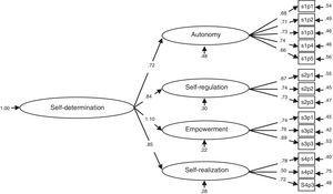 Standardized solution for the hierarchical model obtained in the CFA.