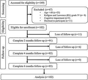 Flow chart of the study procedure.