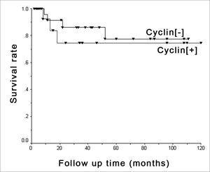 D1 cyclin and survival - Kaplan-Meier's chart showing death occurrence stratified by positive ([+]) and negative ([-]) cyclin groups.