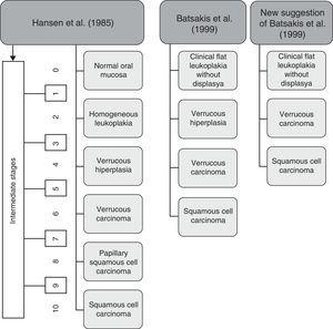 Histologic stages of progression to carcinoma. Adapted from Ghazali et al. (2003).9