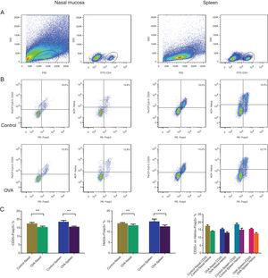 CD25+Tregs and Helios+Tregs were enumerated using flow cytometry in nasal mucosa and spleen of an AR murine model. Gating of CD4+ T cell populations (A). Identifying CD25+Tregs and Helios+Tregs in the control and OVA groups. The statistics are shown in (C). **p<0.01.