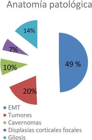 Hallazgos de anatomía patológica: 20 (49%) esclerosis mesiales temporales (EMT), 8 (20%) tumores, 4 (10%) cavernomas, 3 (7%) displasias corticales focales, 6 (14%) gliosis.