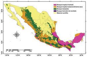 Distribución de los 5 biomas más importantes en México.