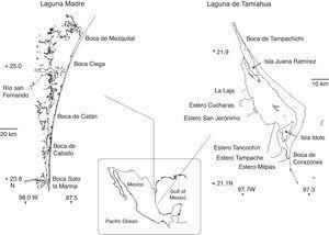 Laguna Madre, Tamaulipas and Laguna de Tamiahua, Veracruz, Mexico.