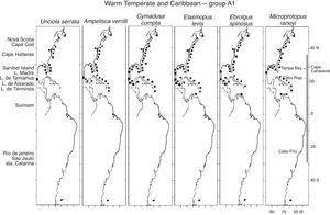 Distribution of Warm Temperate and Caribbean species. Group A1 (Unciola serrata, Ampelisca verrilli, Cymadusa compta, Elasmopus levis, Eobrolgus spinosus, Microprotopus raneyi) along the Western Atlantic (■) including the Mexican lagoons (●).