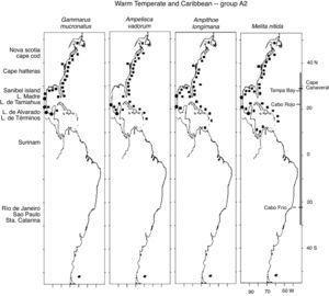 Distribution of Warm Temperate and Caribbean species. Group A2 (Gammarus mucronatus, Ampelisca vadorum, Ampithoe longimana, Melita nitida) along the Western Atlantic (■) including the Mexican lagoons (●).